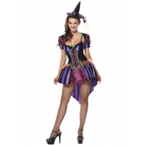 Sexy Adult Witch Costume Purple Swallowtail Dress m40051